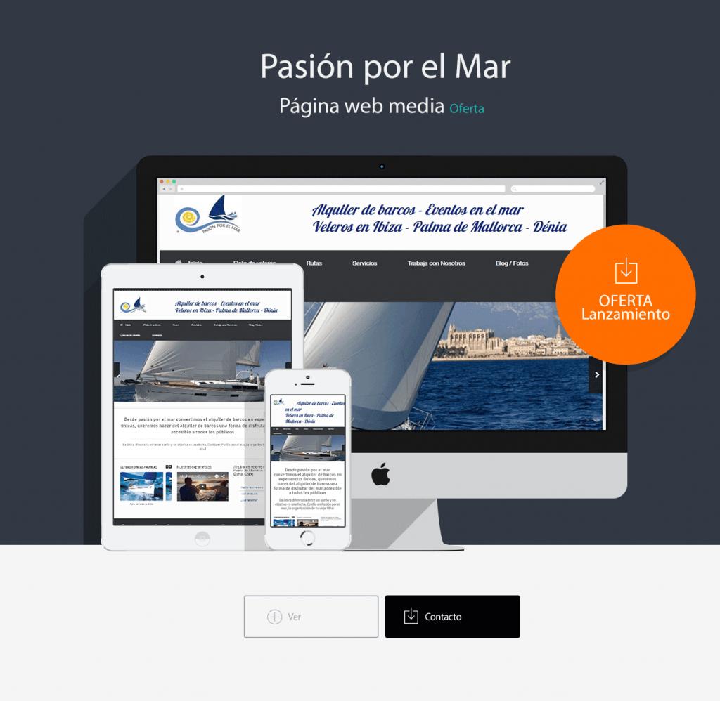 Pasión-diseño-web